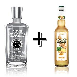Combo Gin Silver + Xarope Gengibre