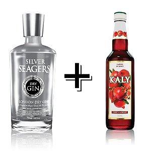 Combo Gin Silver + Xarope Grenadine (Romã)