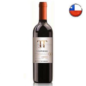 Vinho Tantehue Carménère 750 ml