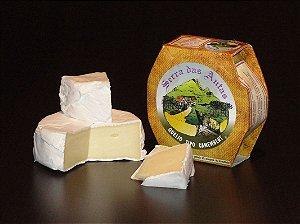 Queijo Tipo Camembert - Serra das Antas