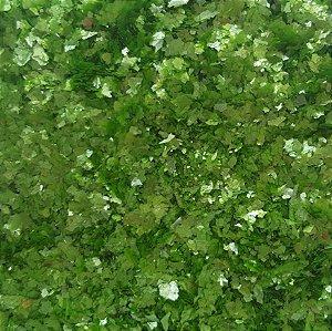 Bioglitter - Verde da Serra
