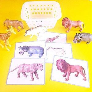 Kit de pareamento Animais Selvagens