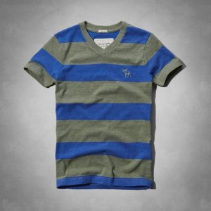 Camiseta Abercrombie & Fitch Masculina Algoquin Tee - Blue Stripe