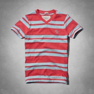 Camiseta Abercrombie & Fitch Masculina Algoquin Tee - Red Stripe