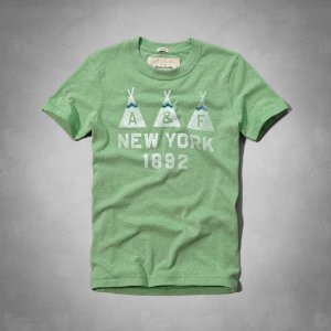 Camiseta Abercrombie & Fitch Masculina Flagstaff Mountain Tee - Green