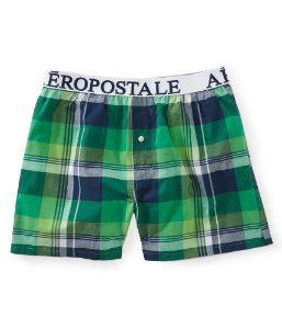 Cueca Aéropostale Masculina Madras Plaid Woven Boxer - Green Fairway