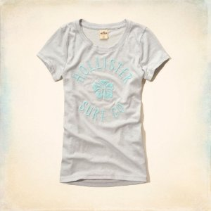 Camiseta Hollister Feminina Surfers Knoll Tee - Light Grey