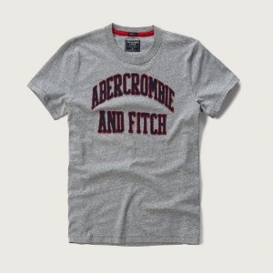 Camiseta Abercrombie & Fitch Masculina Applique Logo Tee - Light Grey
