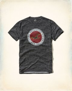 Camiseta Hollister Masculina Printed Logo Graphic Tee - Washed Grey