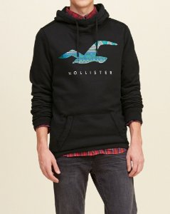Casaco Hollister Graphic Logo - Black