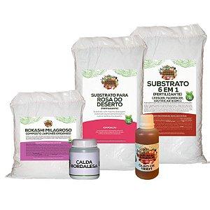 Kit Para Começar a Plantar Rosa do Deserto do Jardineiro Amador