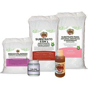 Kit Para Começar a Plantar Antúrios do Jardineiro Amador