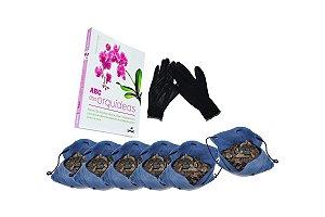Kit para plantar Orquídeas na árvore