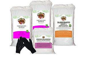 Kit Para Plantar Bromélia