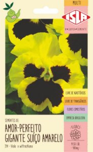 Sementes de Amor-Perfeito Suíço Amarelo