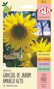 Sementes de Girassol de Jardim Amarelo Alto