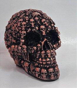 Crânio em Gesso - Caveiras