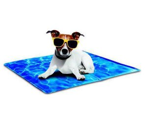 Tapete Gelado para Cachorro Always Cool Dog Mat Afp 50cm x 40cm