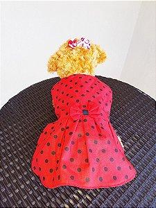 Fantasia Ladybug Joaninha