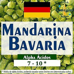 Lúpulo Mandarina Bavaria Hallertau Alemão - 50g
