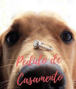 Kit Romântico Pedido De Casamento C/frase Quer Casar Comigo?