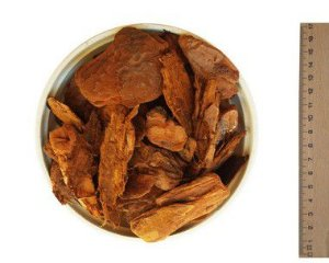 Casca de Pinus Semi-Polida - 40 litros