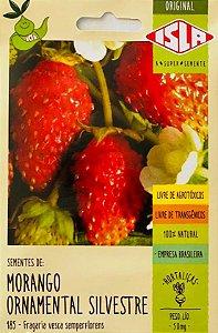 Morango Ornamental Silvestre