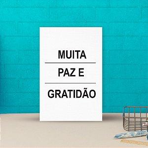 Placa decorativa 20x30cm Decorativa Muita Paz e Gratidão