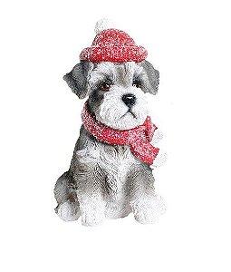 Cachorro c/ gorro vermelho e cachecol