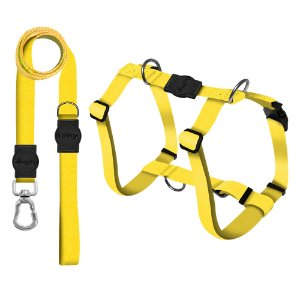 Kit Guia Premium + Peitoral Smart Classic Yellow