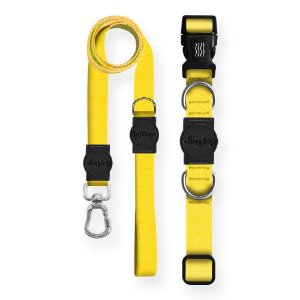 Kit Guia Premium + Coleira Premium Classic Yellow