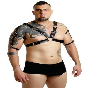 Harness Spartacus