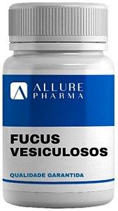 Fucus vesiculosos 500mg