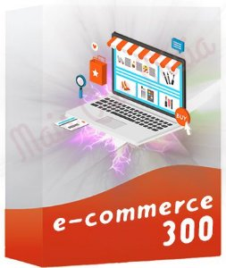 E-commerce 300