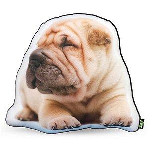 Almofada Coleção Cute Dogs fundo preto - Shar Pei