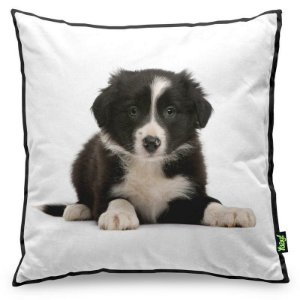 Almofada Love Dogs Black Edition - Border Collie