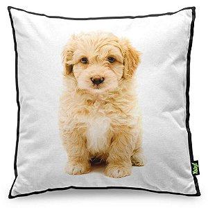 Almofada Love Dogs Black Edition - Poodle