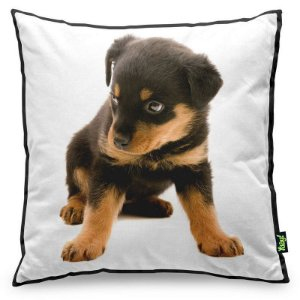 Almofada Love Dogs Black Edition - Rottweiler
