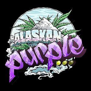 Alaskan Purple Automática Feminizada Pack c/ 5x
