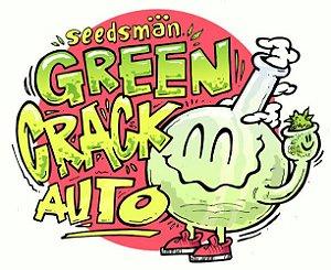 Green Crack Automática Feminizada 5x