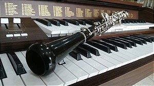 Oboé em Resina Yob211 (Usado) - YAMAHA