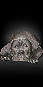Toalha Praia Buettner Black Dog 60381
