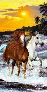Toalha Praia Buettner Two Horses Buettner 64705