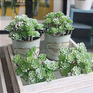 Plantas Suculenta Artificial 10x5 Cm Decoração Casa
