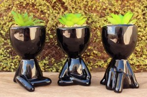 Jogo 3 Vasos Decorativos Para Planta Suculenta Robert Plant