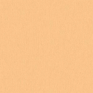 Papel de Parede Homeland 2 Textura HL220308R