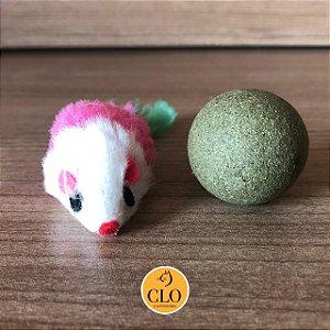 Kit 2 bolinhas de catnip e 2 ratinhos