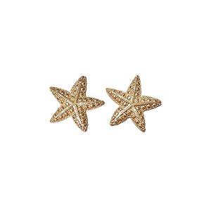 Brinco estrela do mar