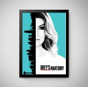 Quadro Decorativo Grey's Anatomy