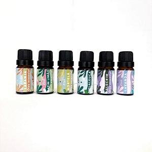 Kit com 6 óleos essencias iniciais